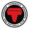 mannheim-tornados-logo_100p